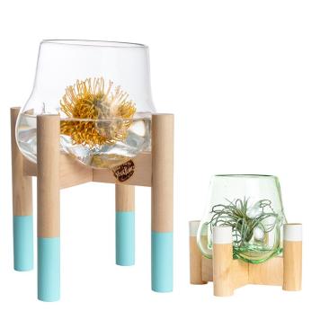Handblown glass terrarium and stand