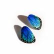 Small Wings Earrings