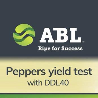 Pepper  Coring and Cutting Machine DDL40