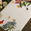 Butterflies · Paper Placemat