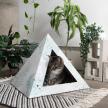 'Oasis' Cardboard Cat Pyramid