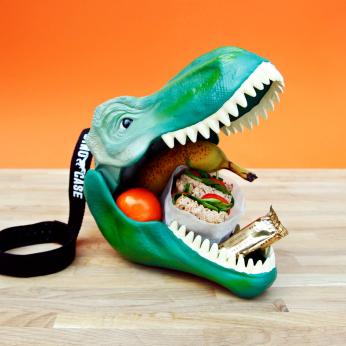 Dinosaur Lunch Box