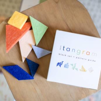 Mini Tangram Block Set