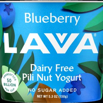 Dairy Free Pili Nut Yogurt, Blueberry 5.3oz