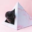 'Rose Quartz' Cardboard Cat Pyramid
