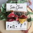 Sari Chic Scarf