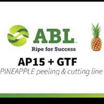 Pineapple peeling and cutting line  AP15+GTF