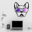 Cool Frenchie   Pets & Dogs Acrylic Wall Art Decor