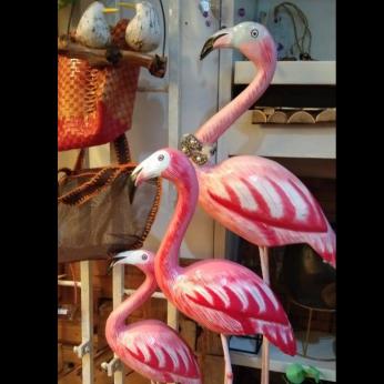 Bali pink flamingo