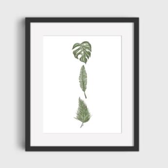 Art Print 3 Plants
