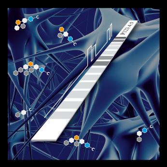 Anti-Gangliosid Dot - 12 LINE - Profile Diagnostics (IgG/IgM)
