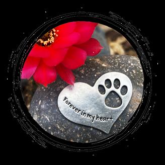 Pet Memorial Rock - Forever in my heart