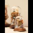 Lapinha - Nativity Scene