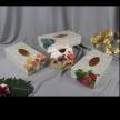 Tissue Box Type 4