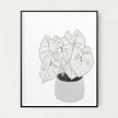 Caladium Unframed Art Print
