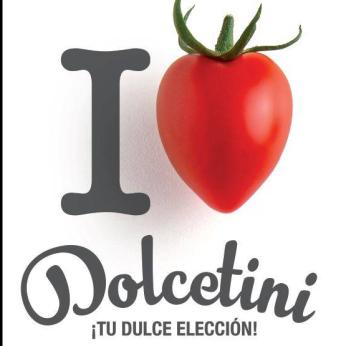 DOLCETINI