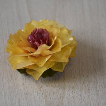 Flor de escama de Peixe