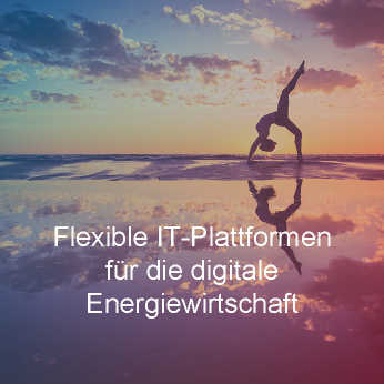 Energy _ Arvato Energy Platform(R)