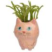 Cat Swirly Plant Pot Mini