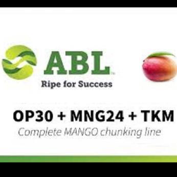 Mango Complete Chunking Line (OP30 peeling - MNG24 destoning -TKM chunking)