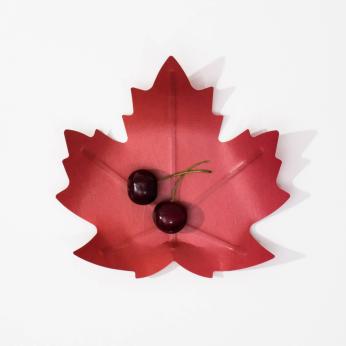 Flexible Hanji paper tray - Maple leaf