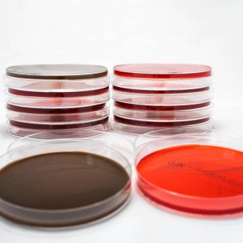 Microbiology Media