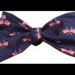 Doodle Dandy Bow Tie