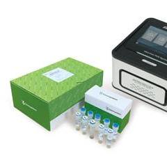 SMARTCHEK Novel Coronavirus (SARS-CoV-2) Detection Kit