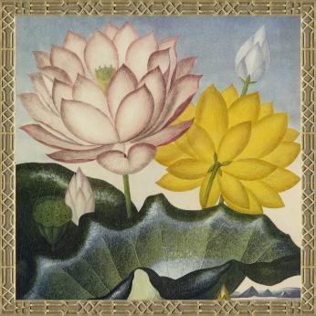 1035-08 PINK & YELLOW LOTUS FLOWERS