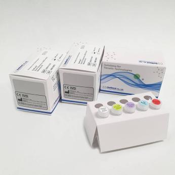 DiaPlexQ™ Novel Coronavirus (2019-nCoV) Detection Kit
