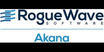 Rogue Wave Software- Akana