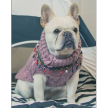 Cable Knit Doggie Jumper with Beaded Tassels