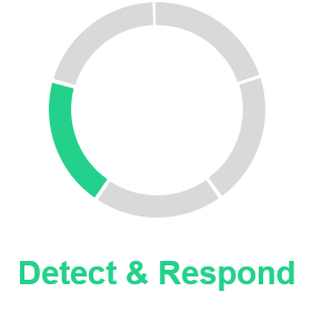 Detect & Respond