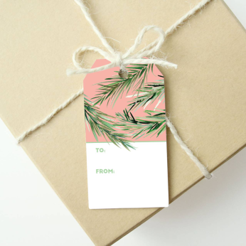 Holiday Gift Tags - Peach / Pink Branches (Set of 6)