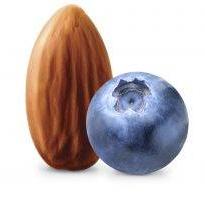 AYO Organic Almond Yogurt, Blueberry