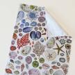 Seashell Cotton Tea Towel