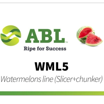 Watermelons line (TS-WM slicer + GTF-WM chunker)